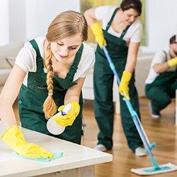kobiety czyszczą mieszkanie